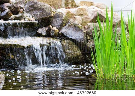 Jardim cachoeira