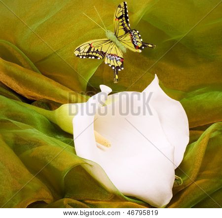 Beautiful Lily bouquet with butterfly