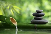 picture of bamboo leaves  - Spa still life with bamboo fountain and zen stone - JPG