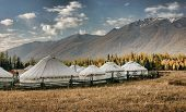 stock photo of yurt  - Mongolian yurts  - JPG