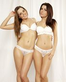 Two young adult attractive and sensuality girl friends - sexy blond and brunette in white lingerie p