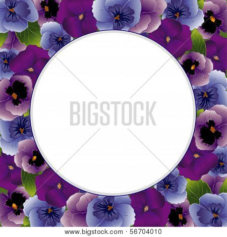 Pansy Flower Picture Frame