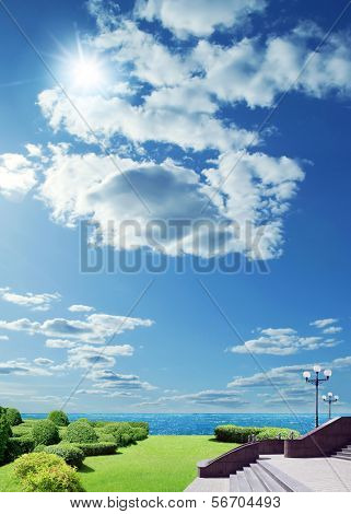green trees on blue sky under the sun