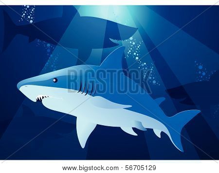 Shark Swimming.eps