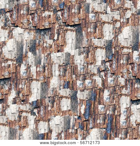 Petrified wood (seamless background)
