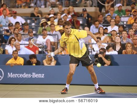 Professional tennis player Tommy Robredo during match at US Open 2013 against Roger Federer