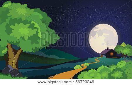Starry Moonlit Night