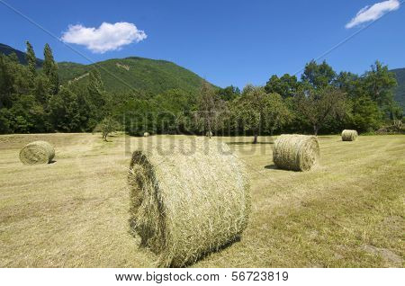 straw bales in the Pyrenees mountains