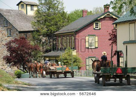 Buggies Amish