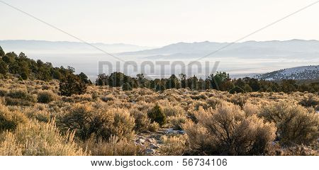 Looking Down Mountain Into Great Basin Nevada Desert Southwest