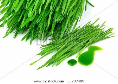 Sprouted Wheat And Wheatgrass Juice