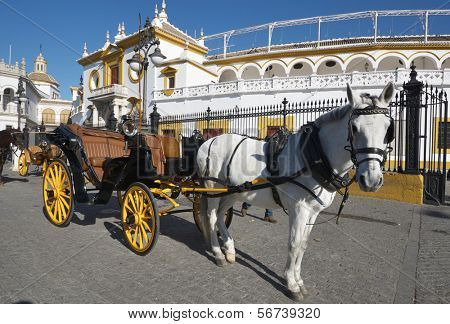 typical  horse-drawn carriage in front of the bullring in Seville, Andalucia, Spain