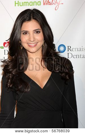 LOS ANGELES - 9 de JAN: Camila Banus na festa