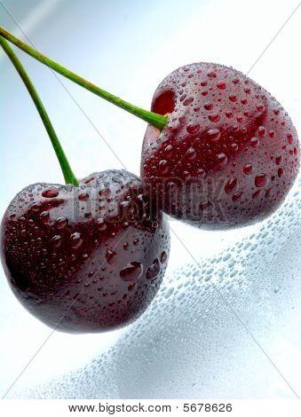 Two Fresh Dark Cherries With Waterdrops