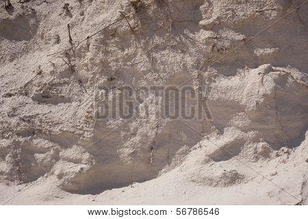 Beach Sand Bank