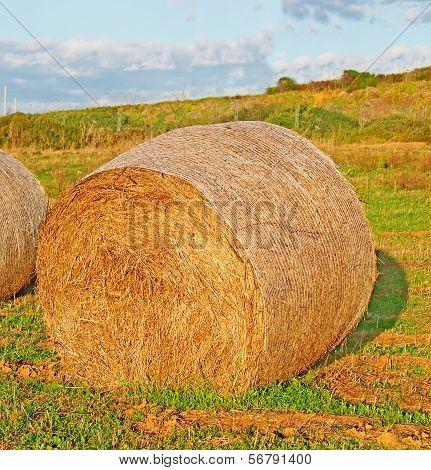 Hay Bale At Dusk