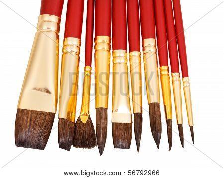 Set Of New Paintbrushes Close Up