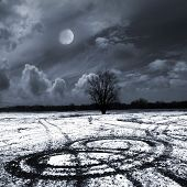 stock photo of moonlit  - winter moonlit night - JPG