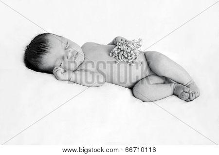Newborn baby holding white flower in hand in black and white