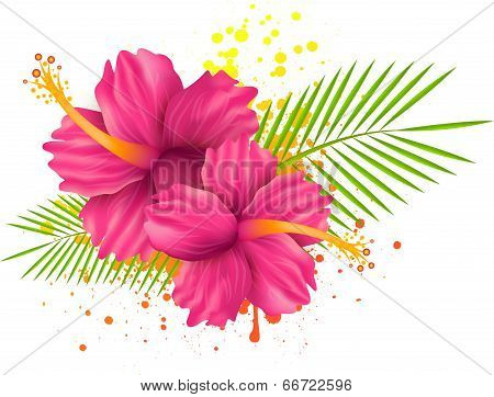 Hibiscus Flowers On Grunge Background