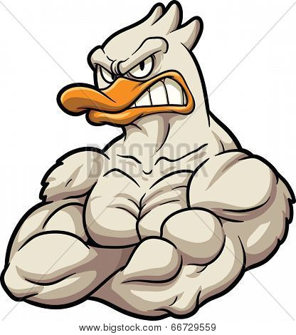 Strong cartoon duck mascot. Vector clip art illustration. All in a single layer.
