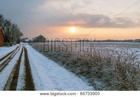 Moor In Winter