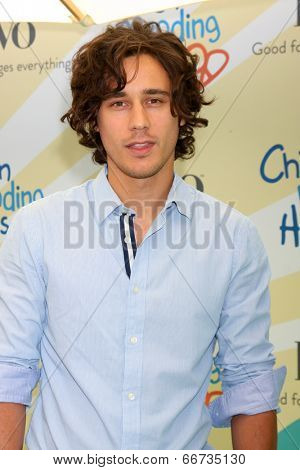 LOS ANGELES - JUN 14:  Peter Gadiot at the Children Mending Hearts 6th Annual Fundraiser at Private Estate on June 14, 2014 in Beverly Hills, CA