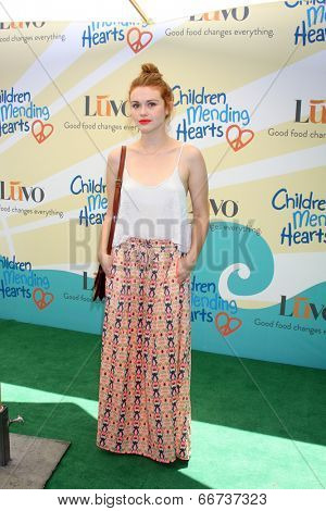 LOS ANGELES - JUN 14:  Holland Roden at the Children Mending Hearts 6th Annual Fundraiser at Private Estate on June 14, 2014 in Beverly Hills, CA