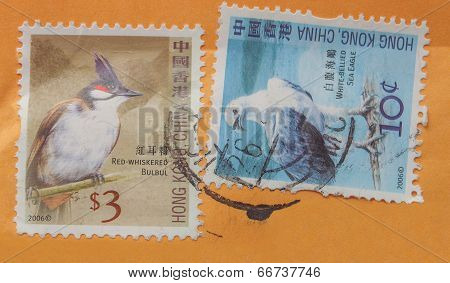Chinese Bird Stamps
