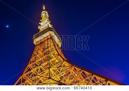 Twilight view of Tokyo tower