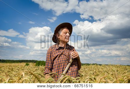 Worker In Barley Field