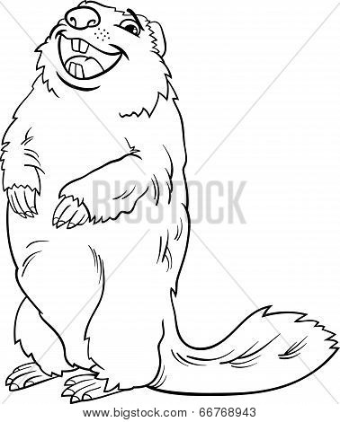 Marmot Animal Cartoon Coloring Book