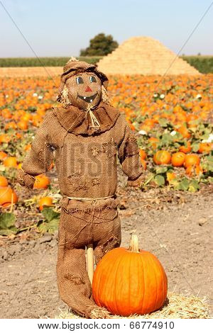 Brown Scarecrow