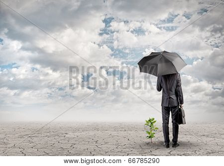 Rear view of businessman protecting little sprout with umbrella