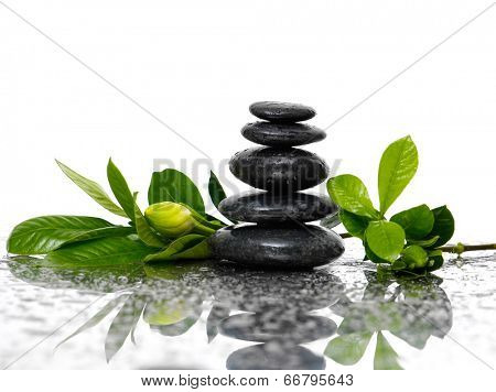 Spa wet Background with gardenia bud with stacked black stones