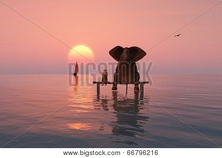 elephant and dog sitting in the middle of the sea