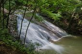 picture of brook trout  - A peaceful trout stream waterfall in Virginia - JPG