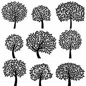 stock photo of tree leaves  - Vector Collection of Tree Silhouettes  - JPG