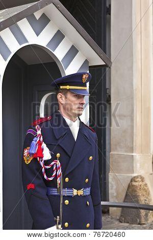 The Castle Guard in Prague.