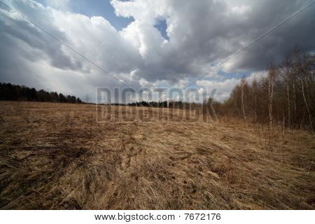 Russian Field In Early Spring