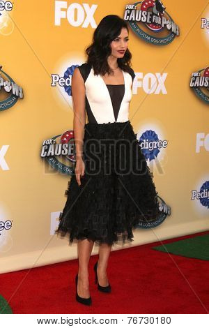 LOS ANGELES - NOV 22:  Jenna Dewan-Tatum at the FOX's