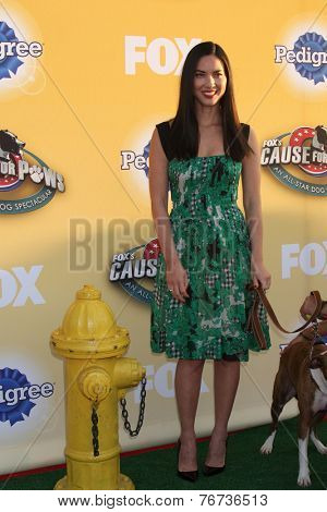 LOS ANGELES - NOV 22:  Olivia Munn at the FOX's