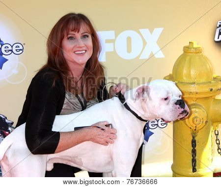 LOS ANGELES - NOV 22:  Dr. Bryn Donnelly at the FOX's