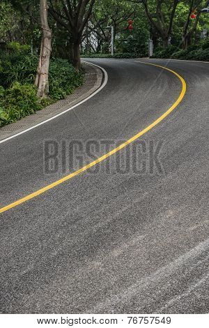 Curved Road With Trees On Both Sides
