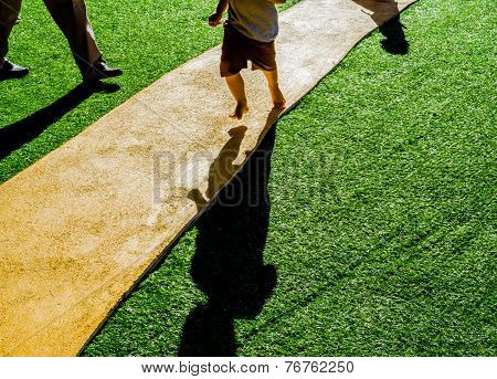 Image Of Artificial Grass Path Way .