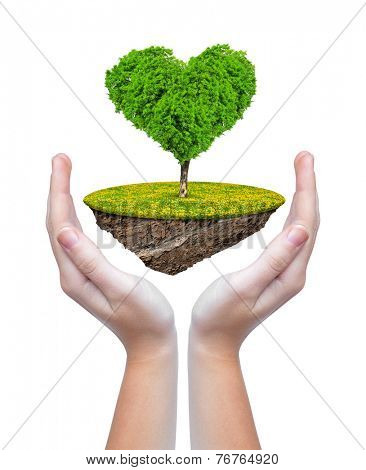 Little island and tree in the shape heart in hands isolated on white background