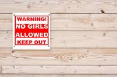 pic of bachelor party  - NO GIRLS ALLOWED Red White Warning Sign on Wood Wall Background - JPG