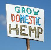 Domestic Hemp Sign poster