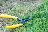 image of grass-cutter  - Scissors cut grass put in garden during cut - JPG