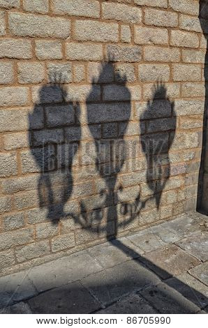 Shadow Of Lamp Post